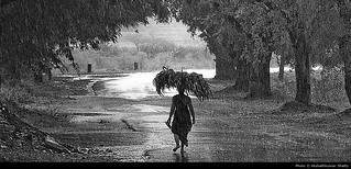 a walk in rain | by akshath