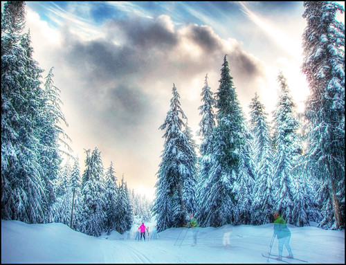 city travel blue winter vacation holiday snow canada ski tourism vancouver forest landscape skiing bc ghost canadian vancouverisland pacificnorthwest olympics hdr victoriabc nationalgeographic firtree lotusland cypressbowl saariysqualitypictures zedzap magicunicornverybest magicunicornmasterpiece