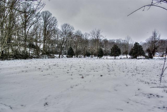 Field, Overton Co, TN