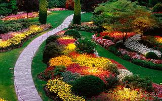 garden | by whisper_walk