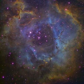 Rosette Nebula by Peter Shah