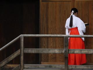 miko@Kamigamo-jjinja, Kyoto, Japan | by -sou-