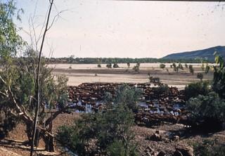 KHS Digital Archive Image