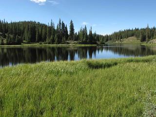 Lily Pond; W of Alamosa, CO | by Lon&Queta