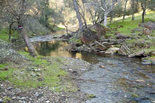 ca rural creek countryside stream bucolic angelscamp caliofornia anthonywstanton anthonywstantonphotography