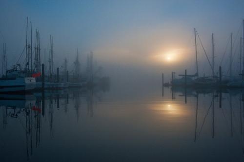 morning mist fog oregon marina sunrise boat dock roadtrip charleston ttt teardroptrailertour