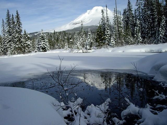 Winter Reflected by Nina
