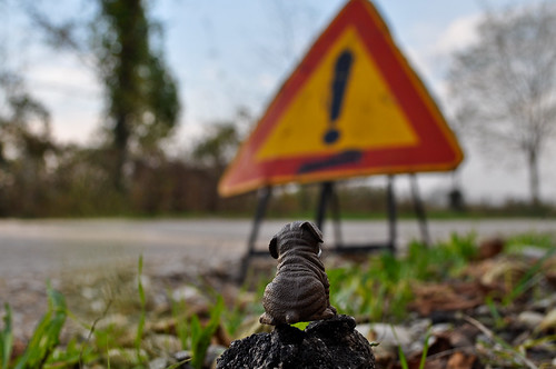 Mr Dobbs Ponders The Use Of Hyperbole In Italian Road Signage | by (Luciano)