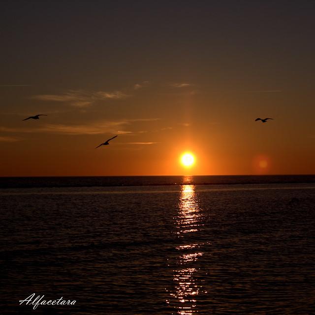 ...........sunset.......... 🍥🍥