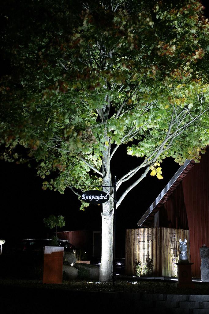 Välkända LED belysning träd | Smakfull belysning utomhus i trädgård m… | Flickr IZ-65