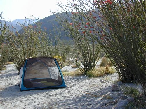 Camping Borrego