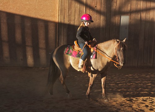shadow horses sunlight children raw western