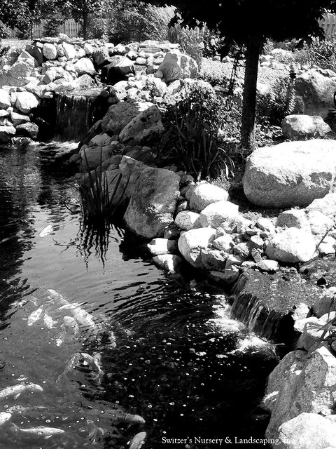 the ART of Landscape Design - Waterfalls in Black & White