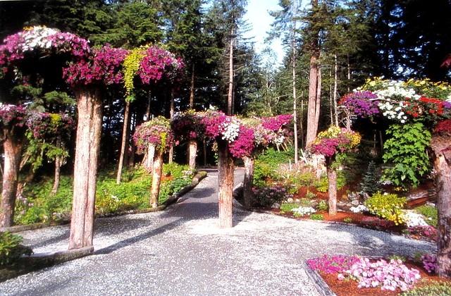Glacier Gardens Postcard (3)