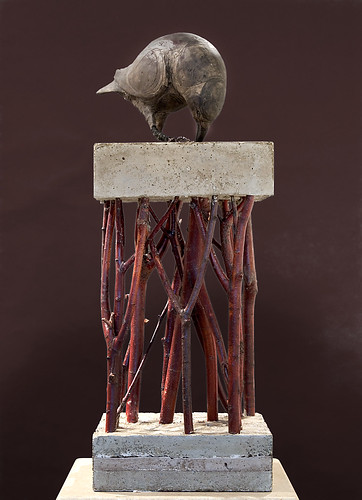 Rook - | by asha.robertson