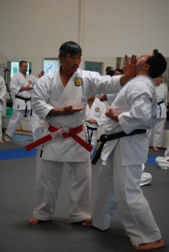 DSC_0705 | by Ichiban Karate
