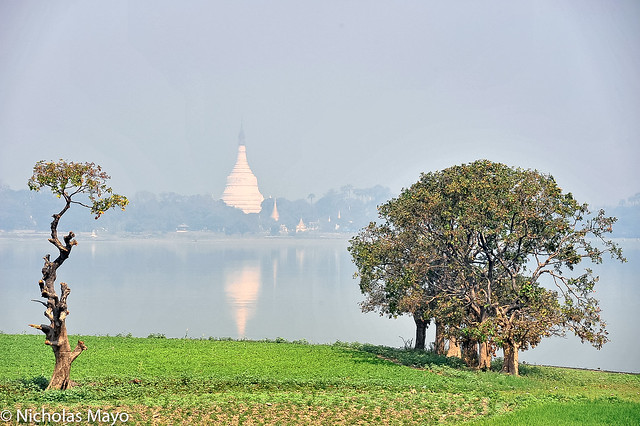 White Stupa Across The Lake