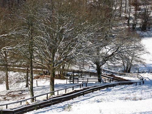 """Le """"Bas de Chêne"""" sous la neige"""