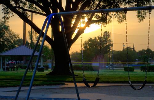sun tree project swings swing swingset 365 day76 project365 11317 3652011 2011317