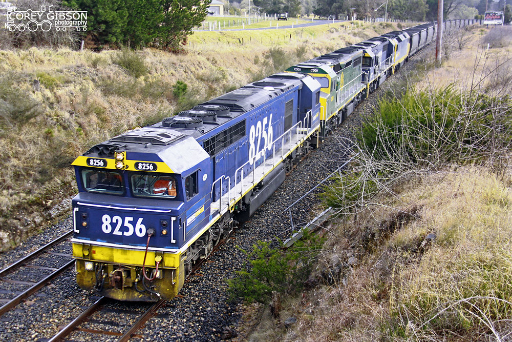 8256, C509, 8223 & DL46 decend towards Lithgow with a load of coal by Corey Gibson