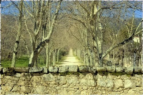 Al final del camino | by adesarmiento
