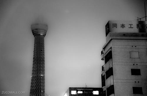 Skytree   by Pietro Zuco