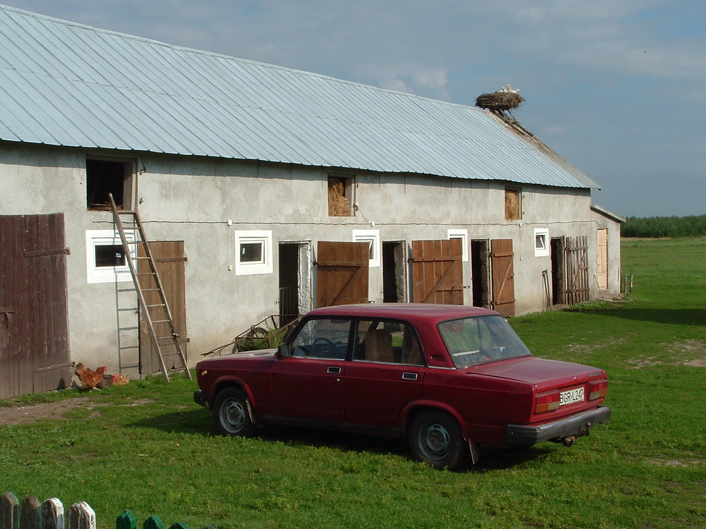 Farm With Lada Chicken And Storks On A Nest Przechody P
