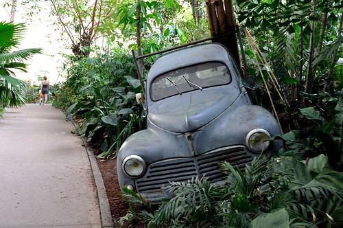 Peugeot 203: Lost in Jungle