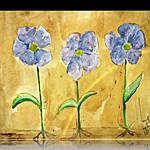 flowers (part 3)