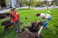 South End Earth Day 2011 - Albany, NY - 2011, Apr - 58.jpg by sebastien.barre
