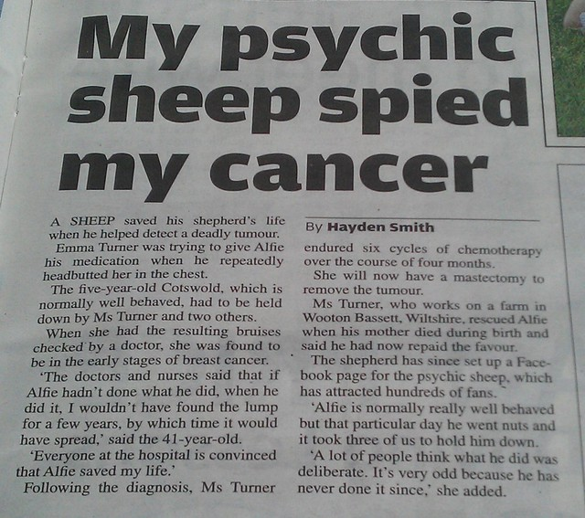 Psychic sheep - The Metro is at it again.