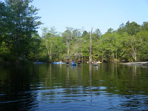 ga georgia unitedstates kayaking springfield paddling lcu ebenezercreek lowcountryunfiltered