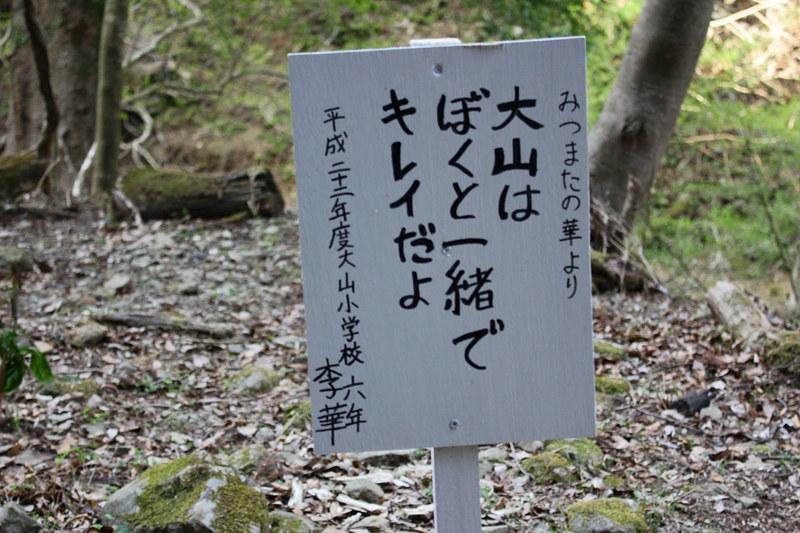 20110417_大山_0037
