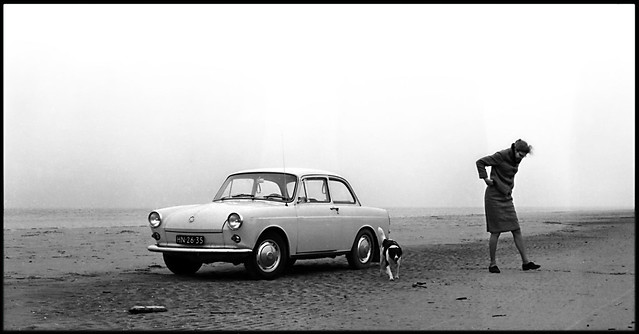 My mother, the dog and the car..
