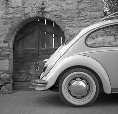 old beetle by MarcoFlicker