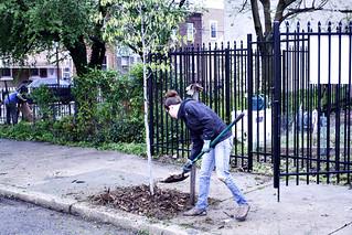 Bouvier Garden 2011 Kickoff