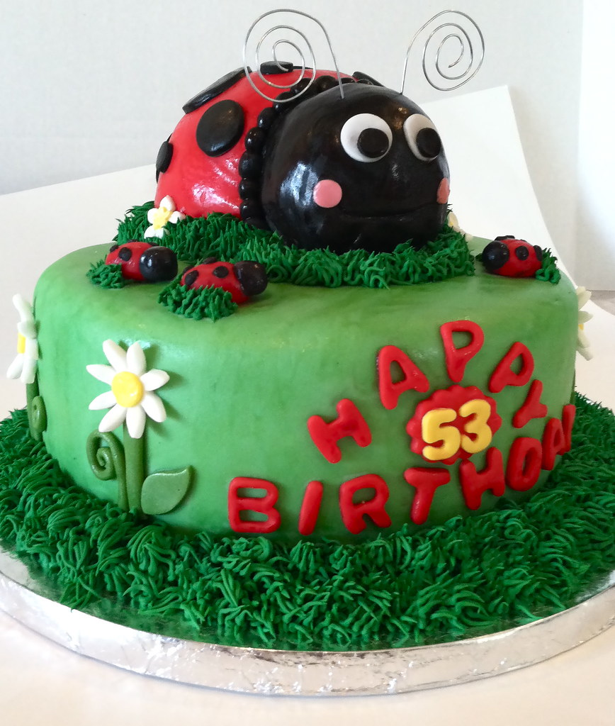 Astonishing Fondant Ladybug Birthday Cake Read My Blog Post About This Flickr Funny Birthday Cards Online Alyptdamsfinfo