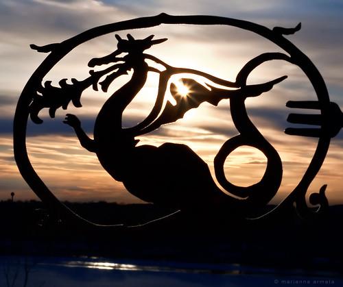 light sunset sky sun canada macro reflection water silhouette closeup cutout landscape lumix dragon quebec montreal panasonic flare g1 setting marianna armata macromondays mariannaarmata