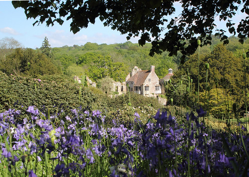 DPP_00015-2. Bluebells at Scotney Castle   by call me Michael