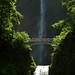 Multnomah Falls, Columbia River Gorge by adambralston74