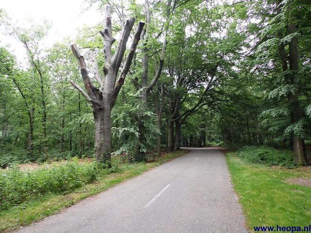 14-06-2014  Veenendaal        40 Km  (66)