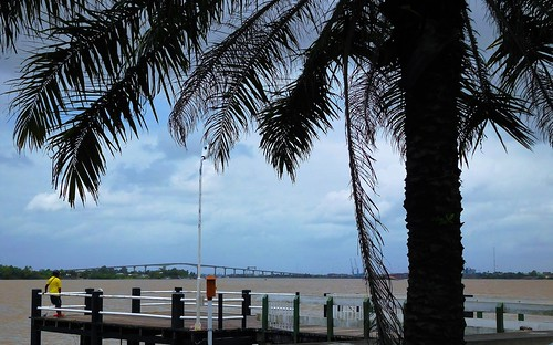 waterkant waterside paramaribo suriname thegalaxy bridge surinameriver palmtree river view