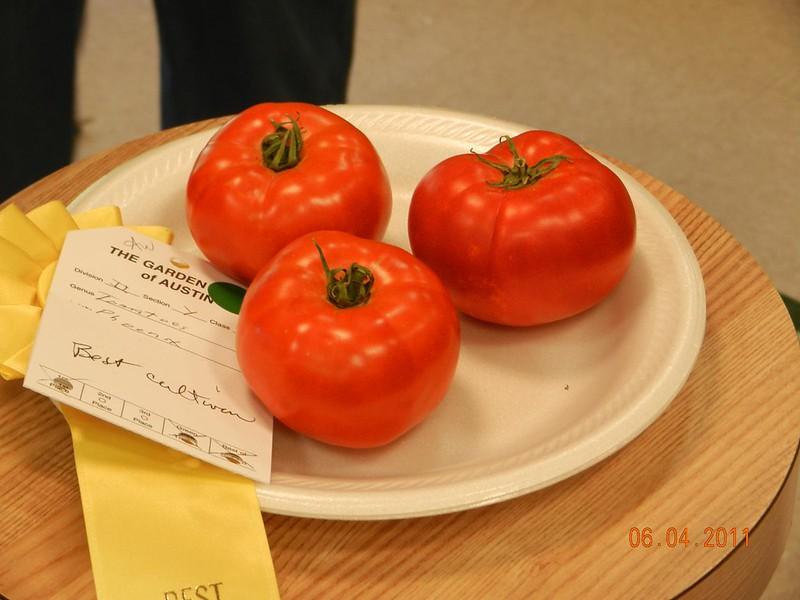 Phoenix Tomatoes - Russell Kohlert