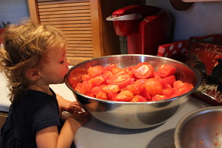 Canning Tomatoes | by kristinefull