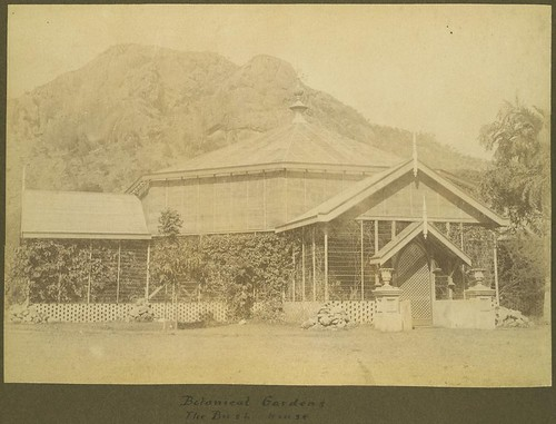 Bush House at the Townsville Botanical Gardens, ca.1900 | by State Library of Queensland, Australia
