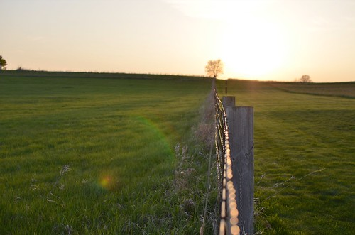 sunset green field wisconsin fence landscape evening spring nikon midwest farm horizon madison wi middleton popefarm d5100