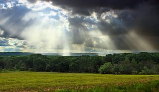 Columbia Wildlife Management Area (Revisit) (2) | by Nicholas_T