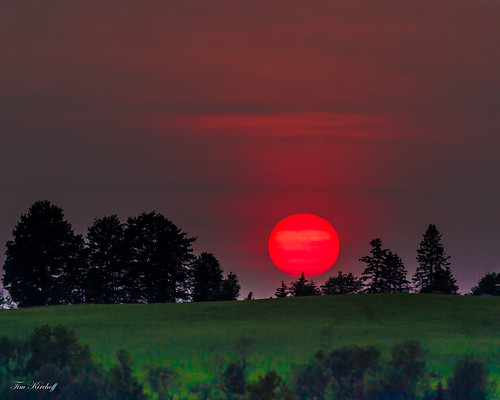 Summer Sunset | by Tim_NEK