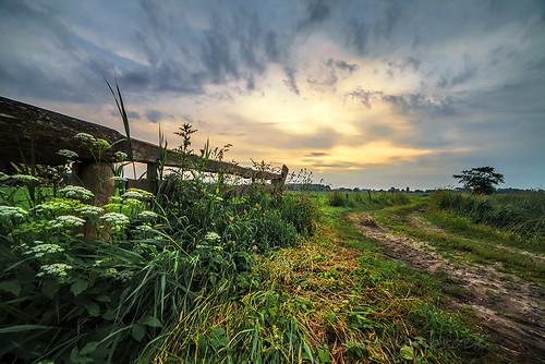 sunset sky sun tree netherlands field fence zonsondergang boom drenthe hek onlanden reinasmallenbroek