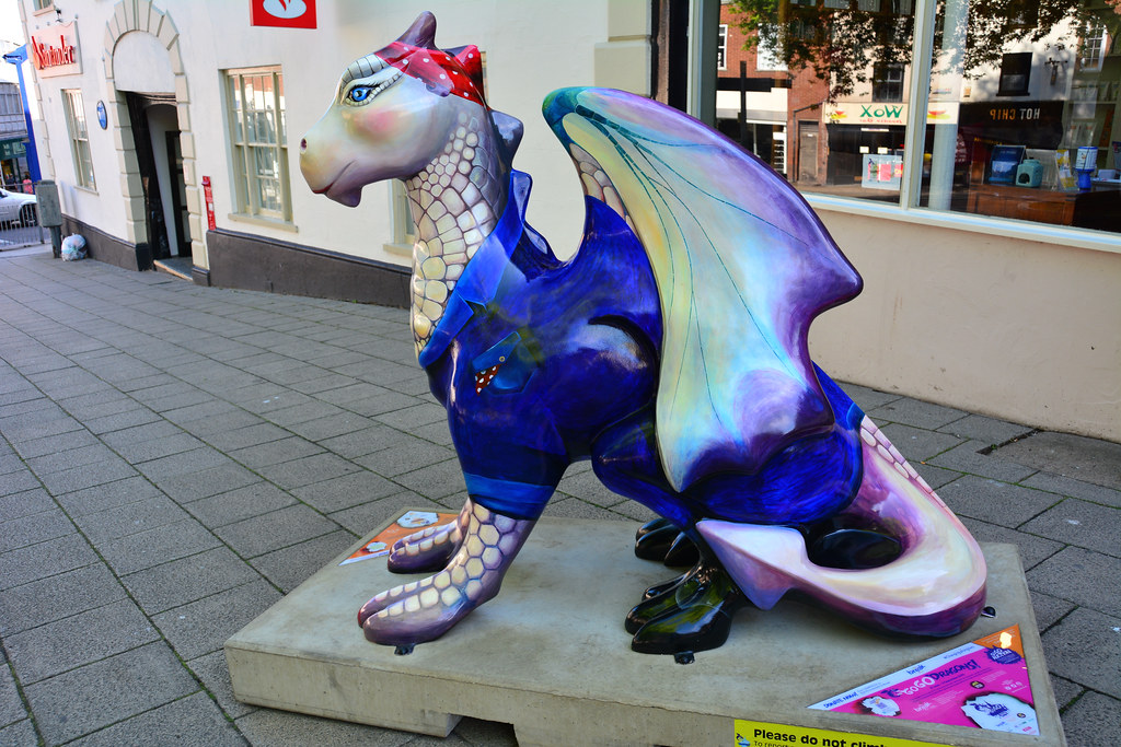 Norwich Dragons , Rosie By Illona Clarke